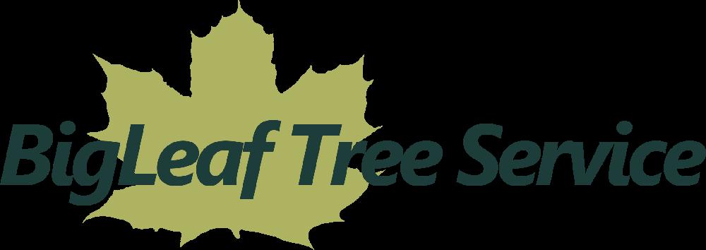 BigLeaf Tree Service